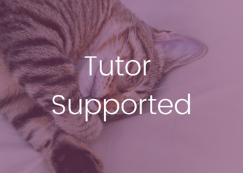 Tutor Supported