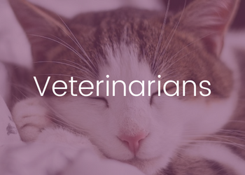 Courses for Veterinarians