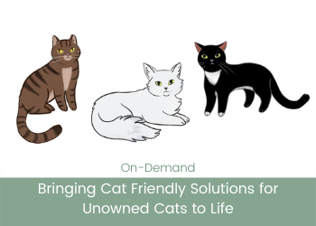 Bringing Cat Friendly Solutions for Unowned Cats to Life