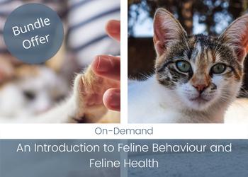 Course Bundle: An Introduction to Feline Behaviour and Feline Health