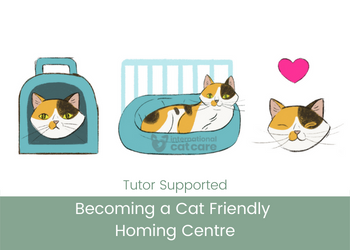 Becoming a Cat Friendly Homing Centre