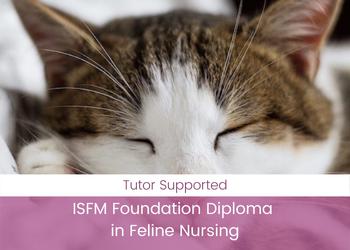 ISFM Foundation Diploma in Feline Nursing